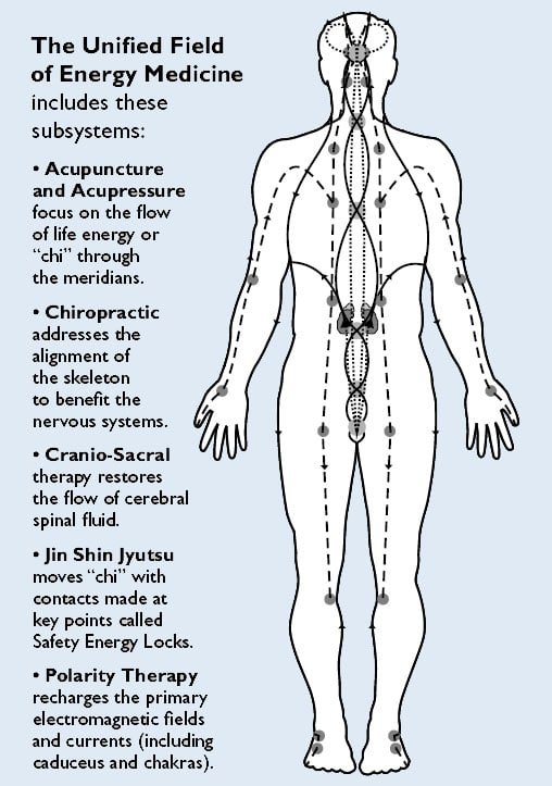 Four Energy Medicine Disciplines, combined graphic